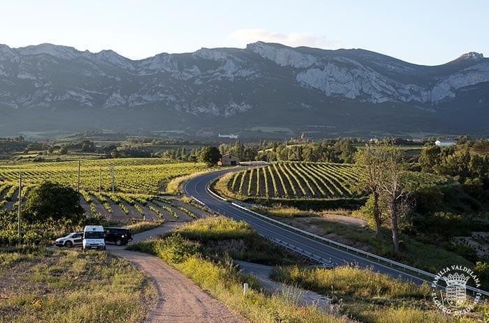 Paisajes de Rioja Alavesa en primavera