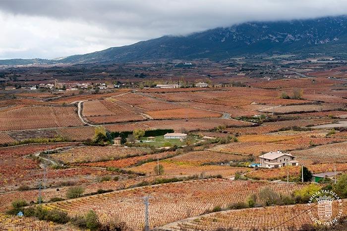 Otoño en Rioja Alavesa. Vistas desde el mirador de Laguardia