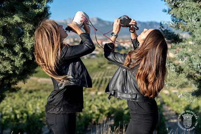 En este post de Bodegas Valdelana te damos 10 razones para visitar Rioja Alavesa