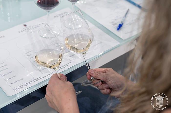 Catando vinos en la sala de catas profesional de Bodegas Valdelana (Elciego, Rioja Alavesa)