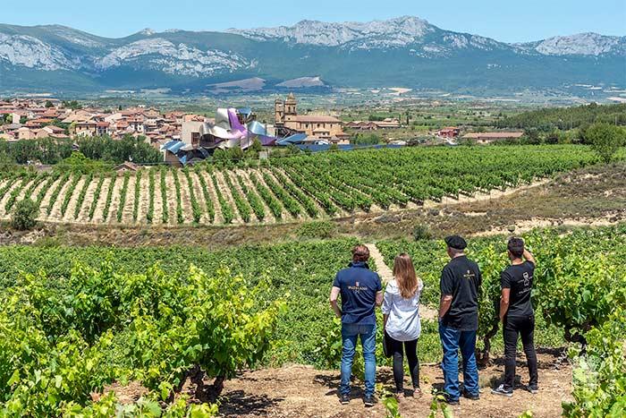 El Marques del Riscal es una de las bodegas más conocidas de Rioja Alavesa, un plan de enoturismo para hacer en esta región.
